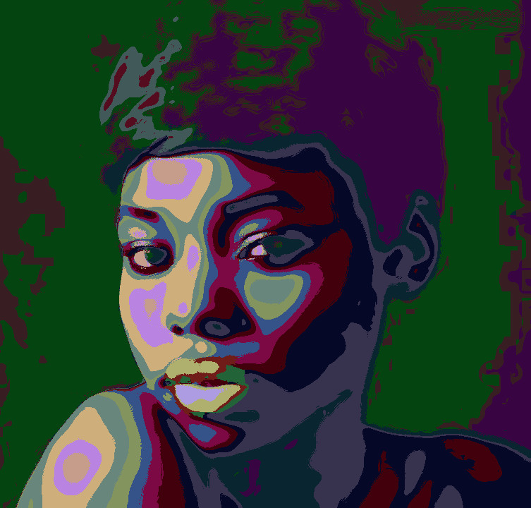 2017-04-09 09-43-58 fashion-1442912_960_720, as a Warhol painting, 20 areas.jpg