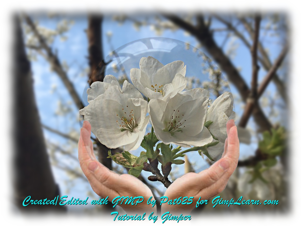 Flowers in Crystal Ball_Gimper Tutorial.jpg