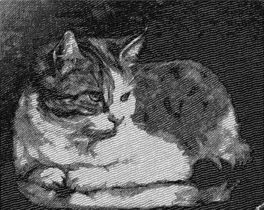 cat_by_woodland_mel-d4yceo6_DN_AnotherDrawingStyle_Simple_Emboss_Desaturate.jpg